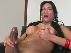 Jo Garcia is another hot blooded tranny who plays alone. Dark haired shemale in black fishnet stockings plays with her meaty dick for your viewing pleasure. She masturbates and exposes her tits!