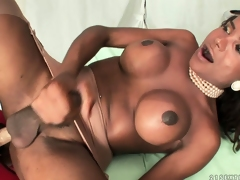 Wild dame bonks the horny shemale upon the long and big strap on